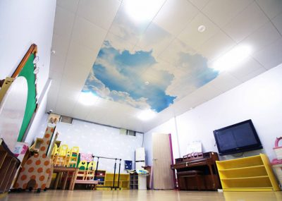 Ceiling-dmc-105