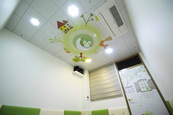 Ceiling-dmc-116