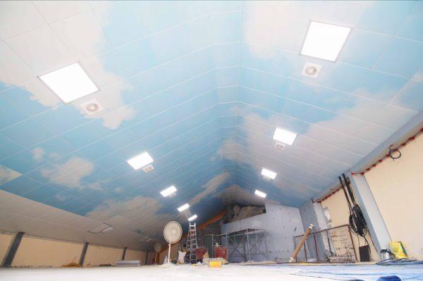 Ceiling DMC 123