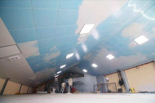 Ceiling DMC 126