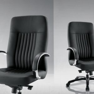 Luxdezine Black Firm Executive Chair