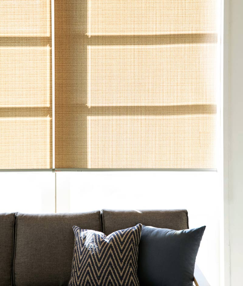 Luxdezine Blinds Roll Screen Shades Living Room Black Sofa Small