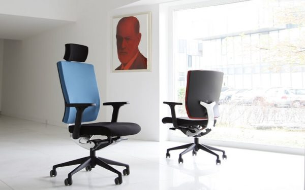 Luxdezine Blue Black Ergonomic Office Chair