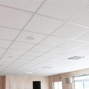 Luxdezine Ceiling Materials