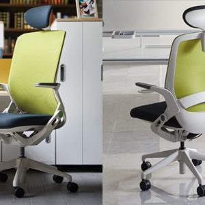 Luxdezine Green Office Chair Ergonomic