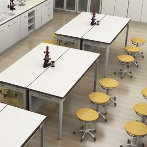 Luxdezine Laboratory Furniture Tables Chairs Classroom Type