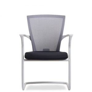 Luxdezine Multipurpose Chairs E1C100