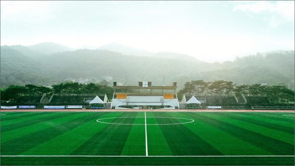 Luxdezine Turf Football Sport Park