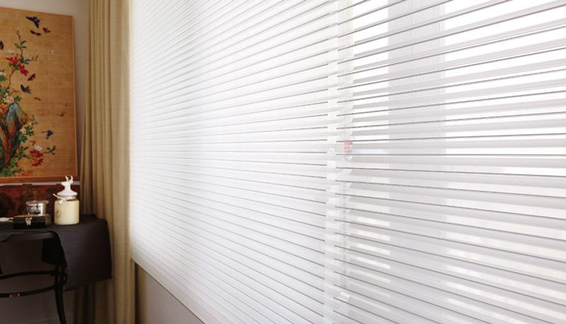 Luxdezine Window Blinds 3D Shade Privacy Blackout