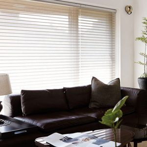 Luxdezine Window Blinds 3D Shade Privacy Living Interior Design