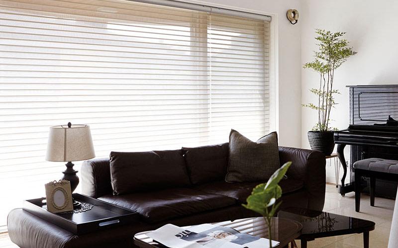 Luxdezine Window Blinds 3D Shade Privacy Living Interior Design