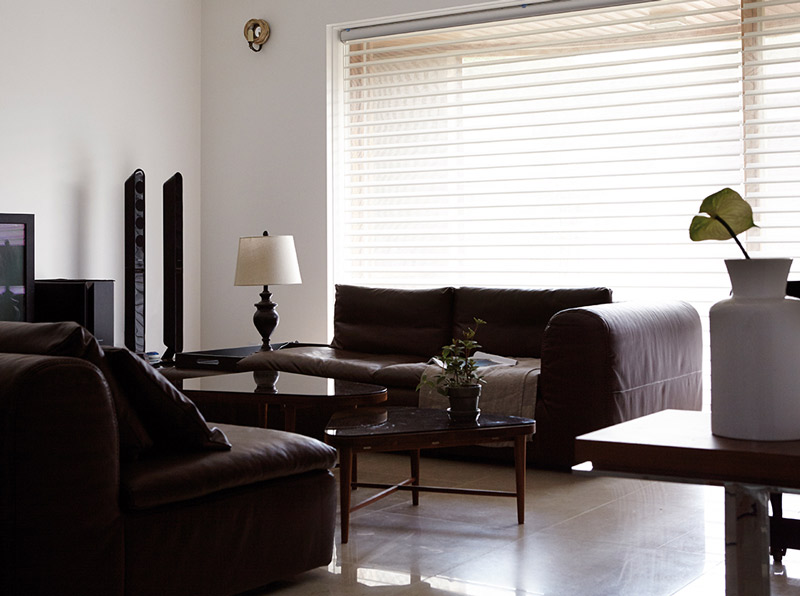 Luxdezine Window Blinds 3D Shade Privacy Living Interior