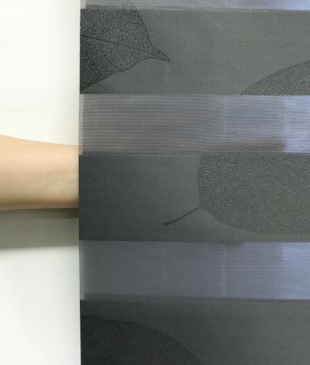 Luxdezine Window Blinds Combi Shades Bedroom Hand Shadow
