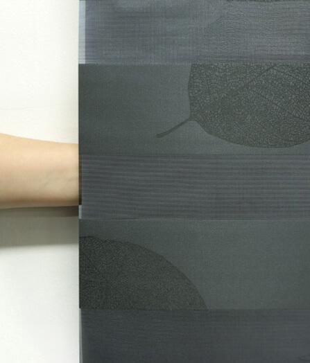 Luxdezine Window Blinds Combi Shades Black Bedroom Privacy Hand