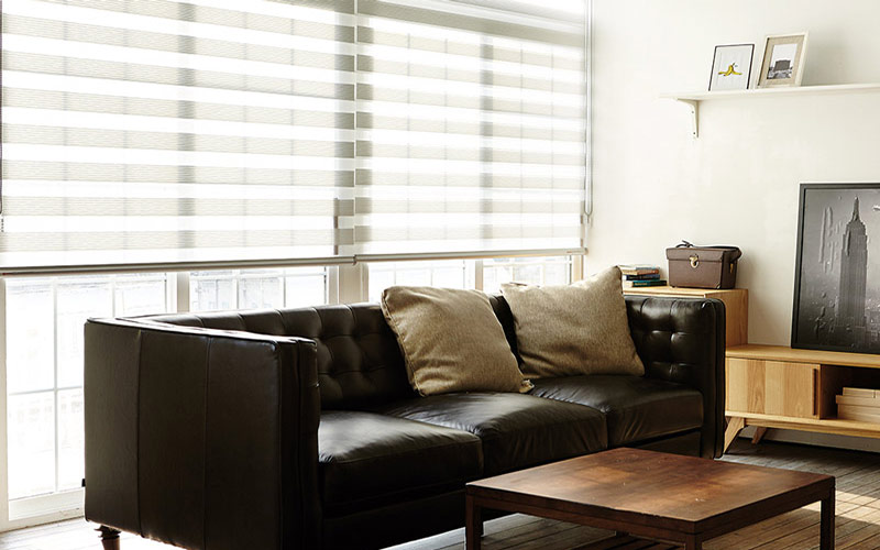 Luxdezine Window Blinds Combi Shades Black Living Room Bright