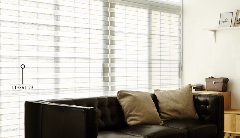 Luxdezine Window Blinds Combi Shades Black Living Room Open