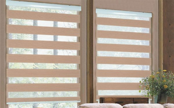 Luxdezine WIndow Blinds Combi SHades ECO Line Pleated
