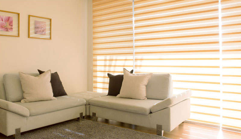 Luxdezine Window Blinds Combi Shades Modern Livng Room