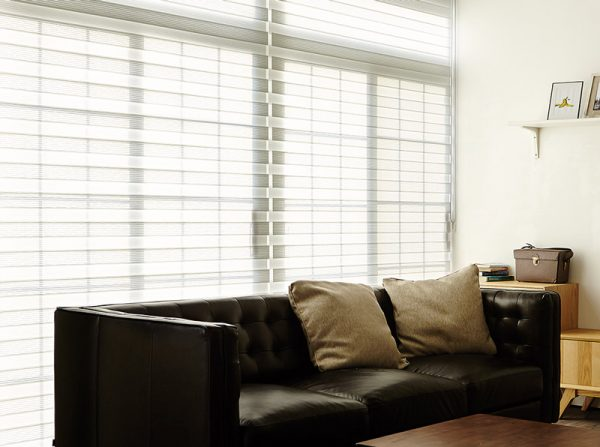 Luxdezine Window Blinds Combi Shades White Living Room