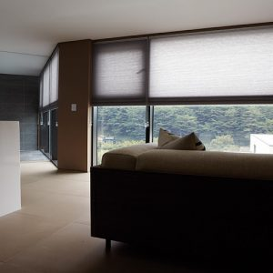 Luxdezine Window Blinds Honeycomb Blackout Interior