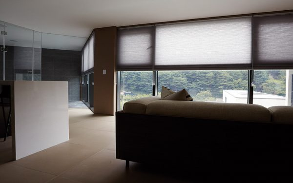 Luxdezine Window Blinds Honeycomb Blackout Interior