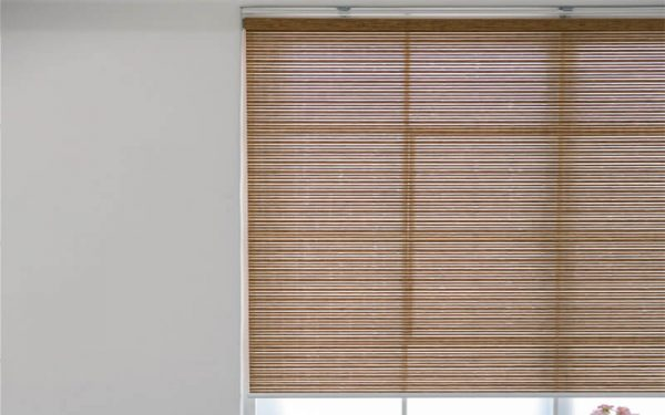 Luxdezine Window Blinds Roll Screen Cello Single
