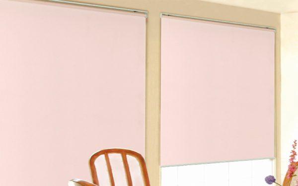 Luxdezine Window Blinds Roll Screen Harmony