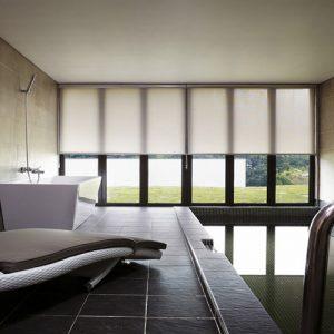 Luxdezine Window Blinds Roll Screen Indoor Pool Modern