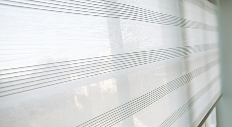 Luxdezine Window Blinds Roll Screen Shades White Zoom Side