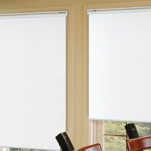 Luxdezine Window Blinds Roll Screen Single Black Out