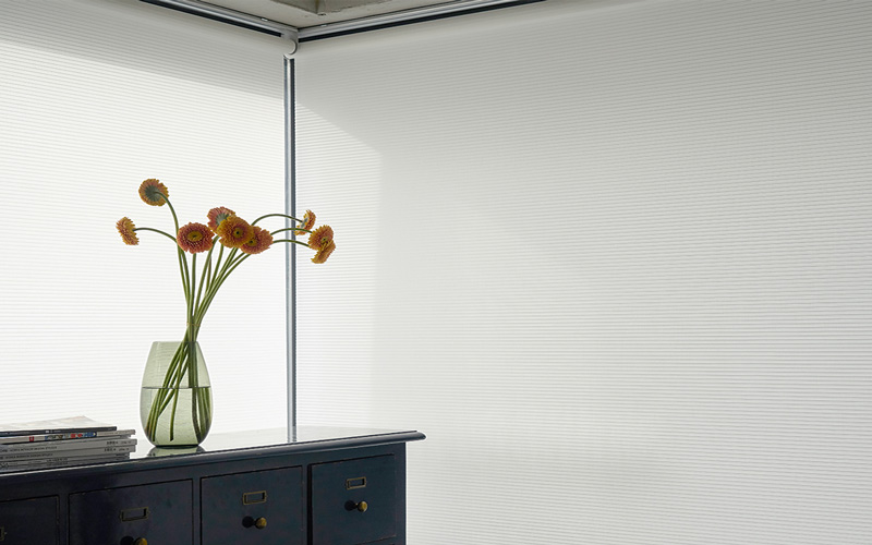 Luxdezine Window Blinds Roll Shades White Noblette Corner