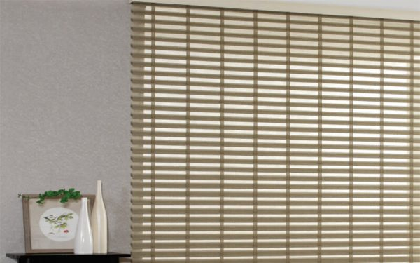 Luxdezine Window Blinds Triple Shade Bres