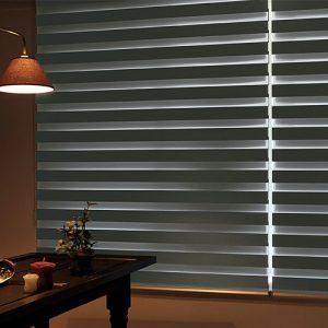 Luxdezine Window Blinds Combi Shades Bedroom Black Far