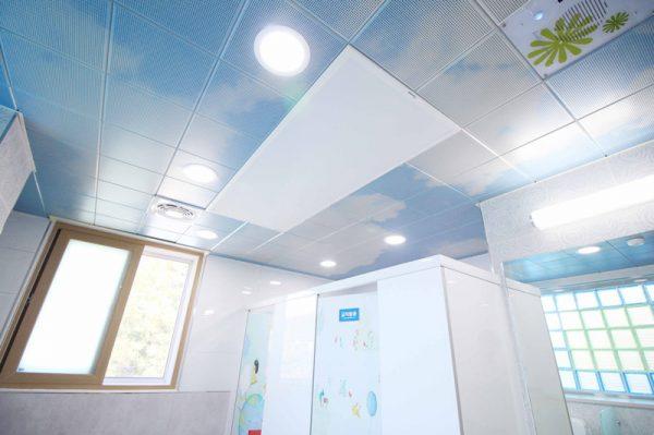 Ceiling-sdmc-10
