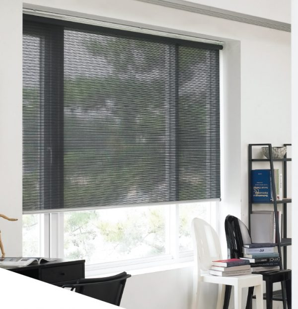 Blinds Eco Screen