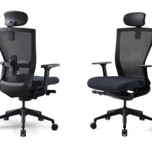 Luxdezine Black Ergonomic Office Chair