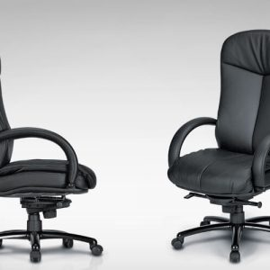 Luxdezine Black Leather 2 Extra Cushion Executive Chair