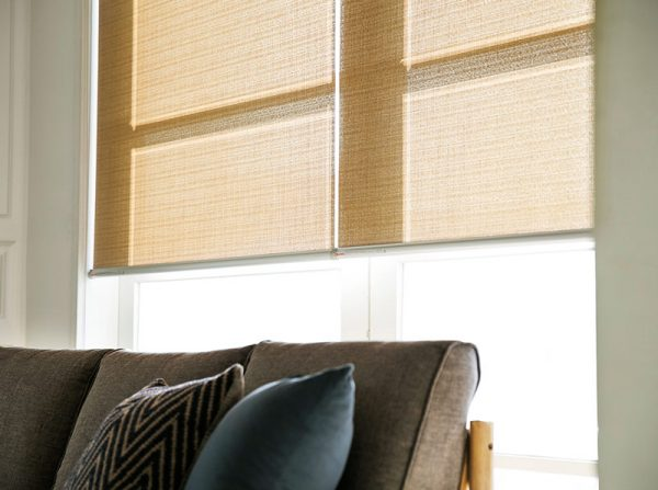 Luxdezine Blinds Roll Screen Shades Living Room Black Sofa Style