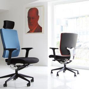 Luxdezine Blue Black Ergonomic Office Chair