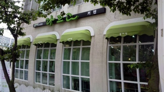 Luxdezine Fixed Awning Korea Green