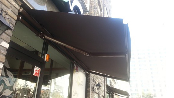 Luxdezine Retractable Awning Actual Black