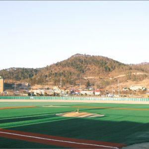 Luxdezine Turf Baseball