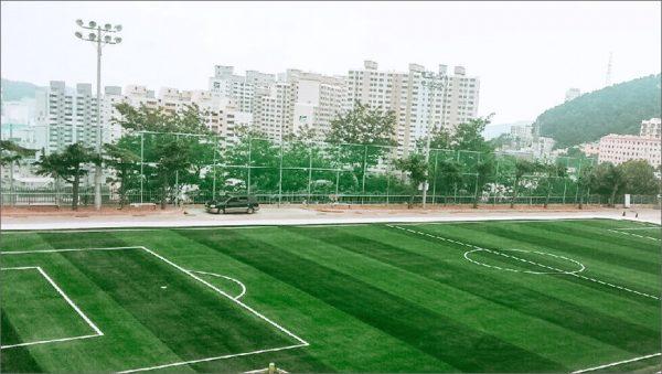 Luxdezine Turf Football Busan