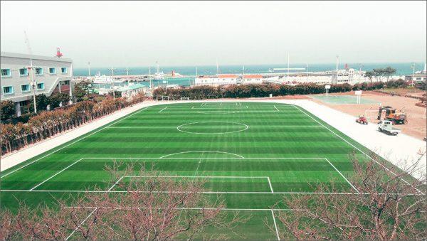 Luxdezine Turf Football School
