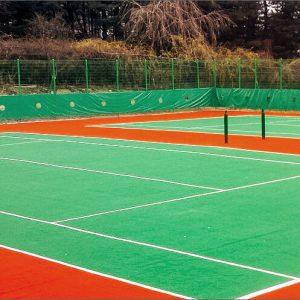 Luxdezine Turf Tennis College