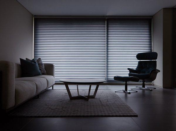 Luxdezine Window Blinds 3D Shade Privacy Dim