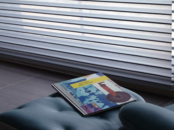 Luxdezine Window Blinds 3D Shade Privacy Magazine