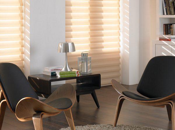 Luxdezine Window Blinds 3D Shade Privacy Sunlight