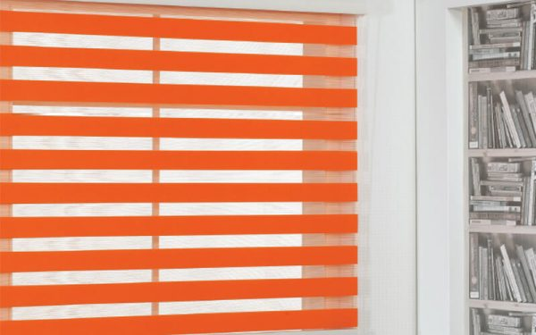Luxdezine Window Blinds Combi Shades Basic