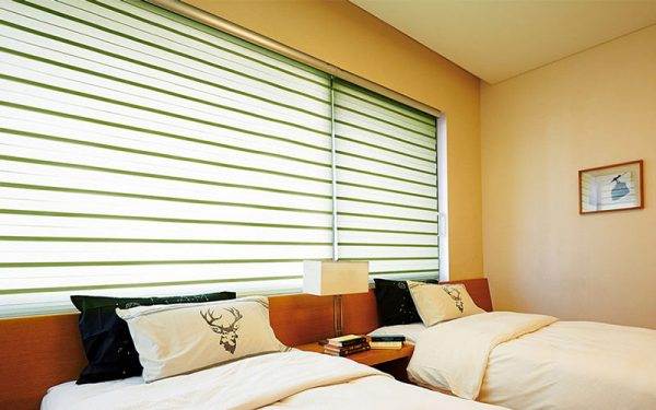 Luxdezine Window Blinds Combi Shades Bedroom Size Out